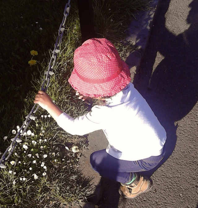 picking daisies outside the Palace of Holyroodhouse